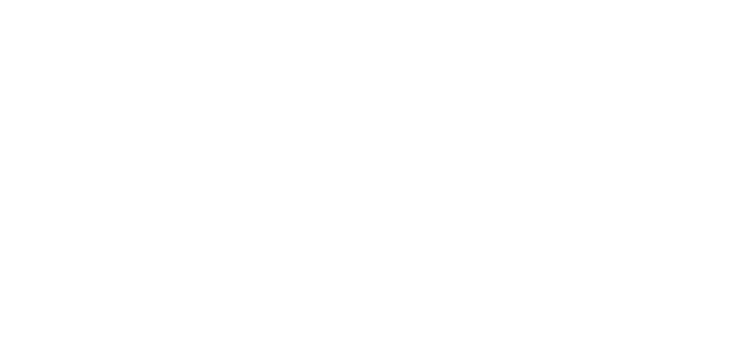 Bidustry Logo